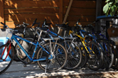 rent-a-bike at Hullam Hostel